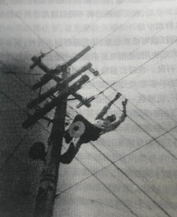 电工工人在作业