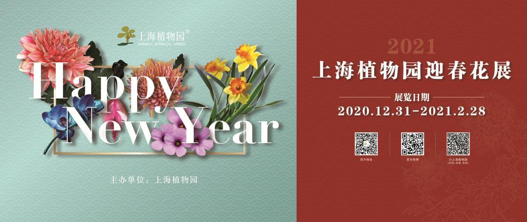 2021上海植物園迎春花展給你好看!