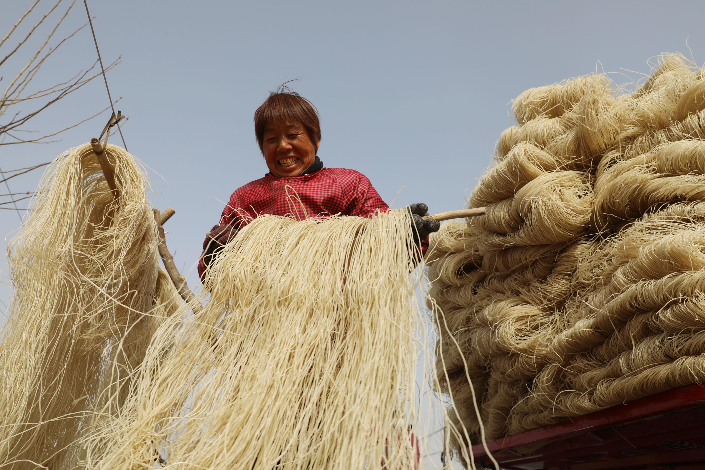 1月13日,河南省焦作市温县黄庄镇南韩村村民在晾晒粉条。