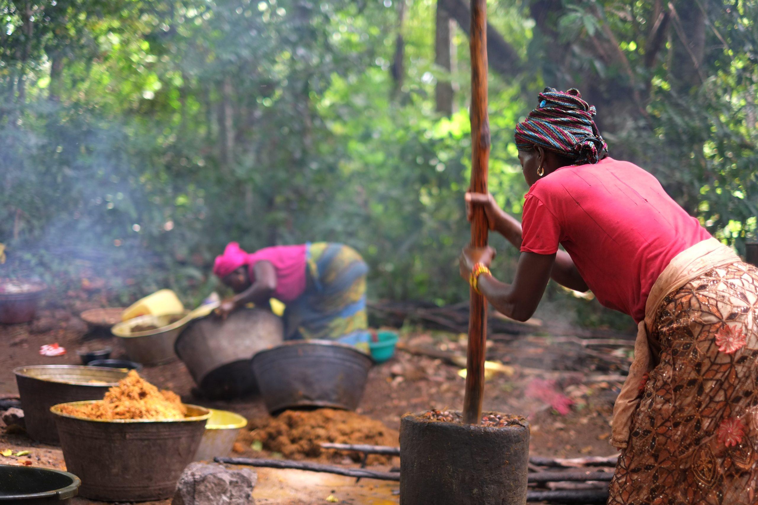 几内亚传统的棕榈油榨取法:将棕榈果烹煮后手工碾碎。图片来源:Uzabiaga /维基共享资源,CC BY SA)