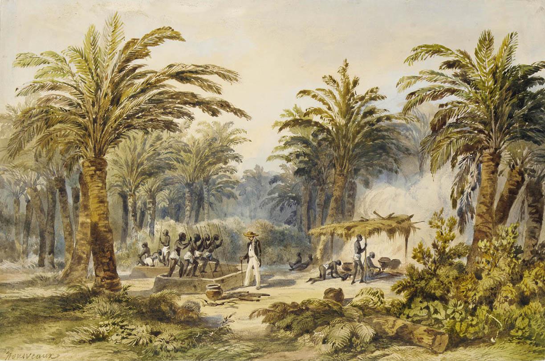 这幅绘于1845年的水彩画描绘了新的棕榈油踩踏榨取法,负责踩踏的通常是奴隶。图片版权 © Édouard Auguste Nousveaux /英国国家海事博物馆
