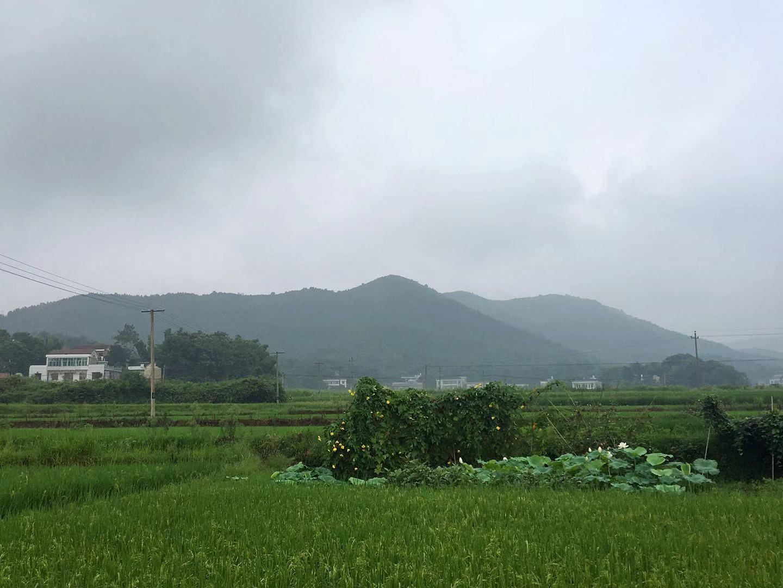 宁乡的农村环境