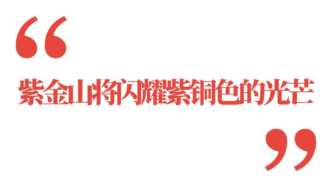 矿业 2020年上半年率先出圈的新锐基金经理蔡嵩松
