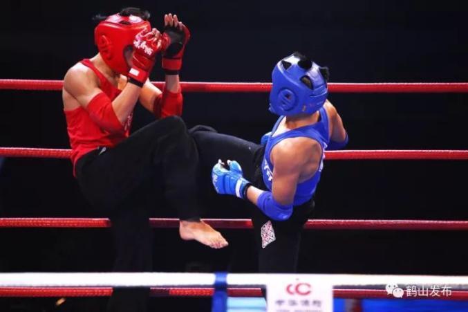 """咏春擂""""梁赞杯""""——2017鹤山市国际咏春拳邀请赛"""