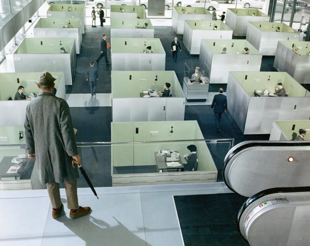 星启娱乐:人们为什么要无休止地工作?