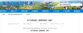 海南省政府官网截图