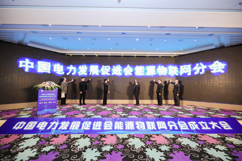 中国电力发展促进会能源物联网分会在京成立