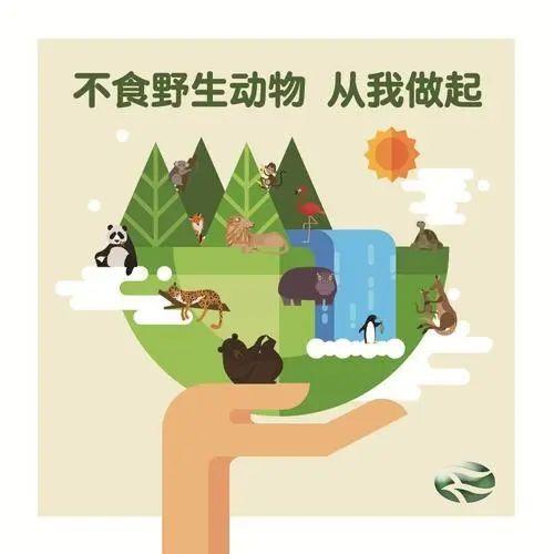 哪些野生动物不能吃? 不能交易?答案就在这里!