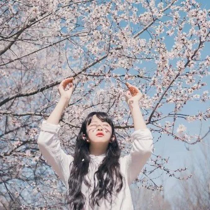 美爆了!2020醉美櫻花旅游文化節震撼開幕!