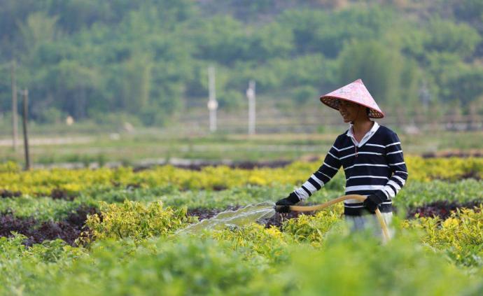 青海省出台7条政策措施支持贫困劳动力就业及发展到户产业