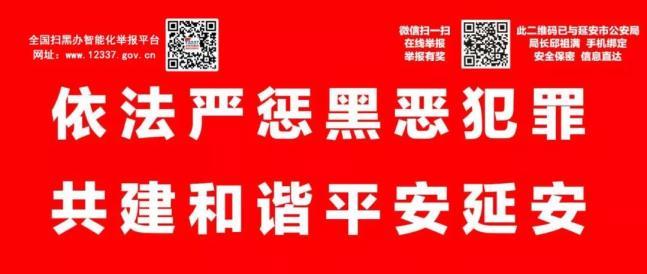 《徐新荣:坚持政治建警改革强警科技兴警从严治警 为谱写延安追赶超越新篇章提供坚强保障》