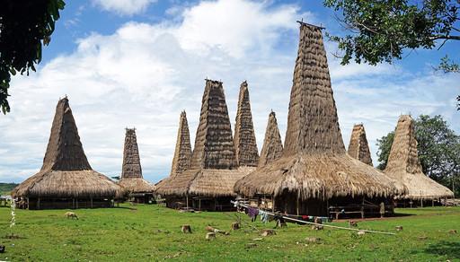 印尼松巴岛高帽子草房