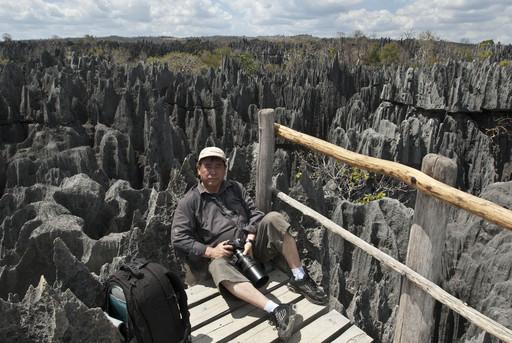 贝马拉哈自然保护区的石林