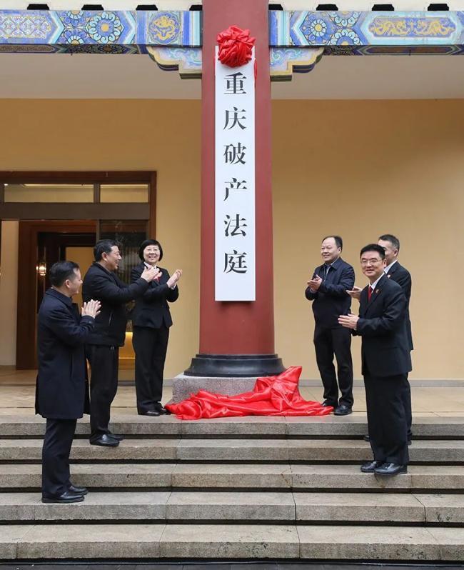 人民日报丨杨临萍代表:人民法院要在经济社会