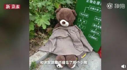 【可爱多】医学院被遗弃的小熊火了 最后还陪嫁了一个皮卡丘