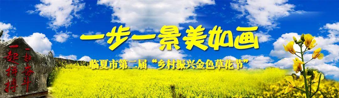 记者带你体验临夏首家新车直购超市_政务_澎湃新闻-ThePaper