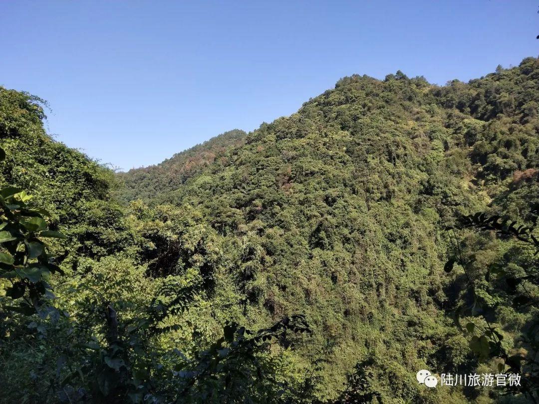 山青水绿!玉林将新添一家3A级景区,估计10月验