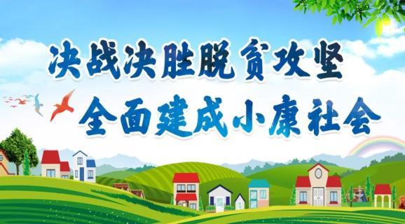 """临洮县副县长李兰广淘宝直播间卖百合,让甜百合""""大地飘香"""""""