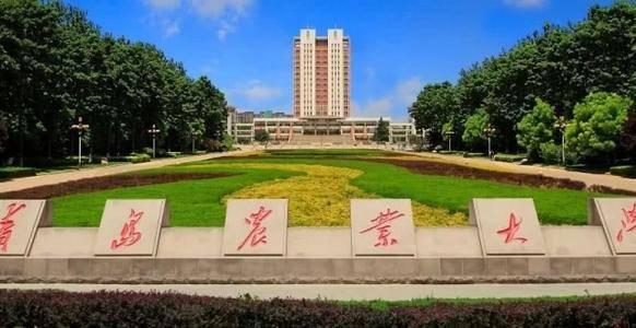 2020年山东美术位次_曲阜师范大学2020年山东各专业录取分数线最低517分