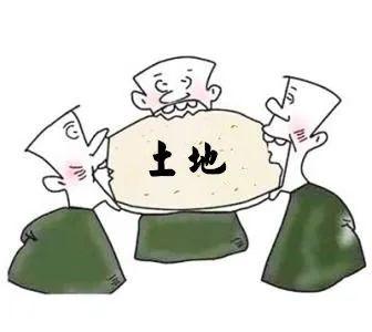 亲兄弟因土地生嫌隙法官倾力调解续亲情_政务_澎湃新闻-ThePaper
