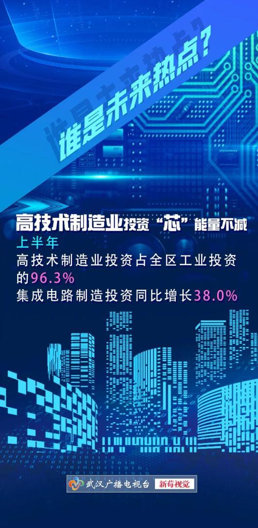 2021东湖高新区gdp_武汉各区2020年GDP数据东湖高新区第一