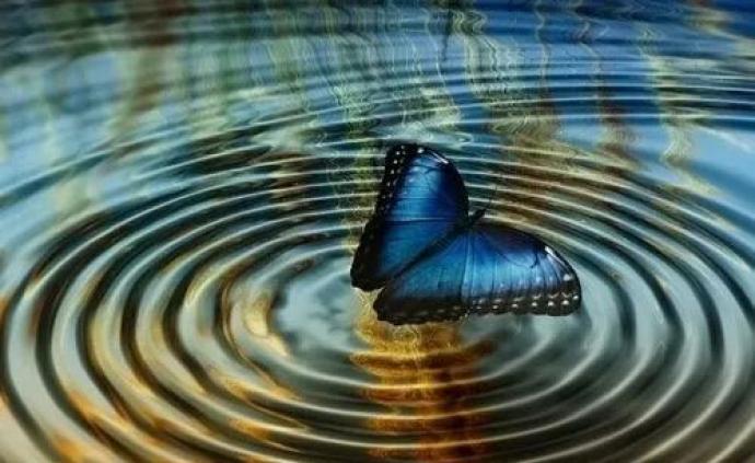 """量子的世界,不允许""""蝴蝶效应""""丨时间旅行"""