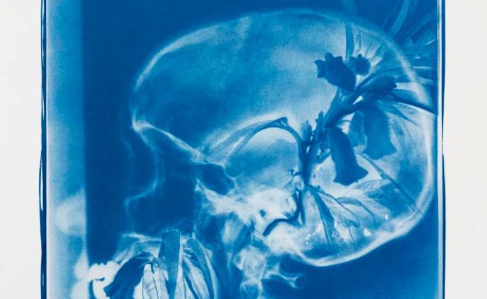 读档 | 胡为一:蓝色骨头