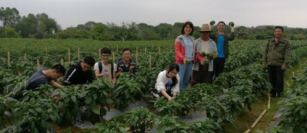 《绿硕——绿色种植践行者》团队开展大田试验