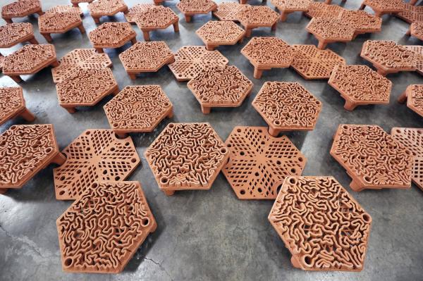 团队将珊瑚碎片移植到珊瑚礁盘上,总占地约40平方米。(图片鸣谢: Christian J. Lange)