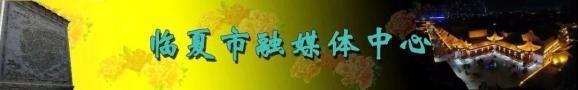 奥运冠军、乒乓球女子单打大满贯得主邓亚萍打卡八坊十三巷_政务_澎湃新闻-ThePaper