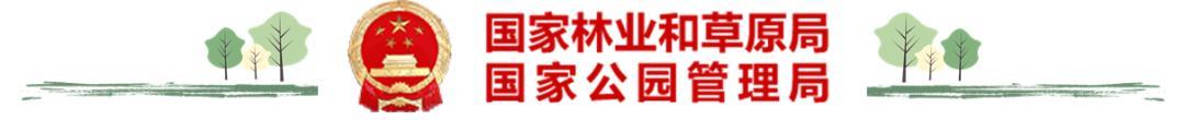 国家公园丨神农架国家公园:绿水青山间的生态回响_政务_澎湃新闻-ThePaper