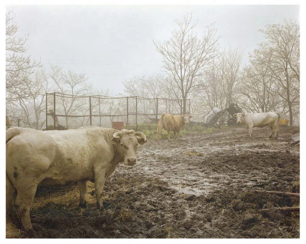 纪实摄影:乡村根源,藏在草垛里的宝藏
