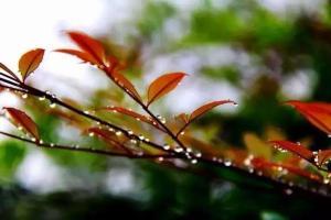 未来三天陕西省有雨,请及时添衣,以防感冒【